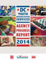 Agency Progress Report 2014