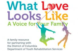 What Love Looks Like - A Voice for Families