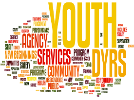 Word cloud describing DYRS agency audience and service populations