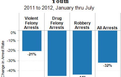 Chart showing a reduction in arrest rates for three types, violent felony (-21%), drug felony (-45%), robbery (-44%), ALL (-32%)